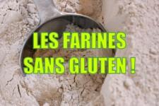 Choisir sa farine sans gluten